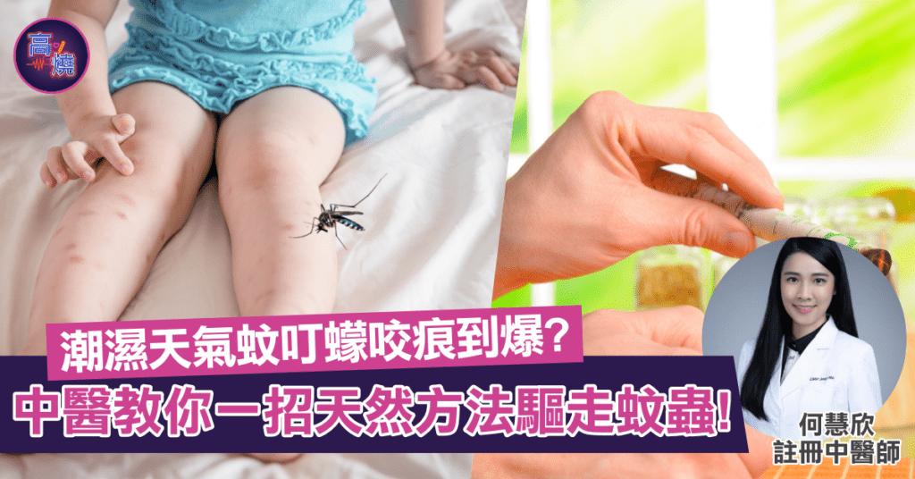 【潮濕天氣】蚊叮蠓咬痕到爆?中醫教你天然方法驅走蚊蟲話咁易!